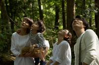 木の上に座り上を見上げる家族4人