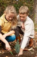 苗を植える少年少女2人 24024000265| 写真素材・ストックフォト・画像・イラスト素材|アマナイメージズ