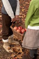 リンゴのかごを持つ少年少女2人の手元