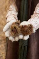 毬栗を持つ少女の手元 24024000371| 写真素材・ストックフォト・画像・イラスト素材|アマナイメージズ