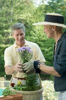 花を摘むシニアカップル 24025000392| 写真素材・ストックフォト・画像・イラスト素材|アマナイメージズ