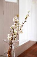 花瓶に活けられた桜の枝