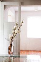 花瓶に活けられた桜の枝 24029000194| 写真素材・ストックフォト・画像・イラスト素材|アマナイメージズ