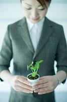 観葉植物を持つビジネスウーマン 24031000129| 写真素材・ストックフォト・画像・イラスト素材|アマナイメージズ