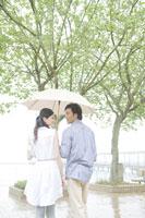 傘を差して散歩するカップル
