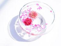 水に浮かぶ花々と花びら