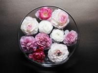 水に浮かぶ花々