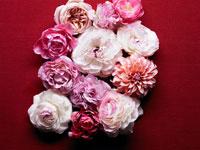 並べられた花々