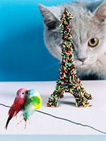 お菓子のエッフェル塔の周りにいる猫と鳥