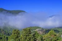 赤木城址と雲海