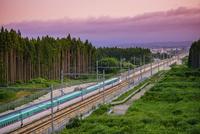 北海道新幹線 25003008242  写真素材・ストックフォト・画像・イラスト素材 アマナイメージズ