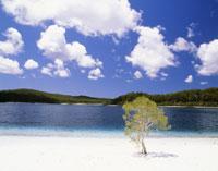 マッケンジー湖