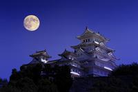 姫路城 月 25023072165| 写真素材・ストックフォト・画像・イラスト素材|アマナイメージズ