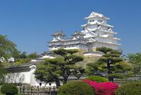 姫路城 25023072869| 写真素材・ストックフォト・画像・イラスト素材|アマナイメージズ