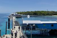 グリーン島 船着き場 25023074370| 写真素材・ストックフォト・画像・イラスト素材|アマナイメージズ