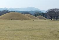 慶州歴史地域 25023074840| 写真素材・ストックフォト・画像・イラスト素材|アマナイメージズ