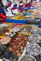 チャガルチ市場 25023074864| 写真素材・ストックフォト・画像・イラスト素材|アマナイメージズ