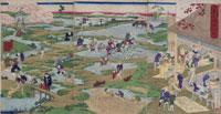 浮世絵 周延 農民耕作の図