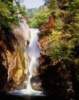 秋の仙娥滝 昇仙峡