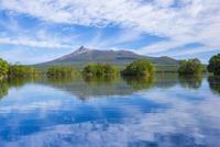 大沼と駒ケ岳 25041036195| 写真素材・ストックフォト・画像・イラスト素材|アマナイメージズ