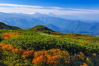 旭岳から望む十勝岳連峰