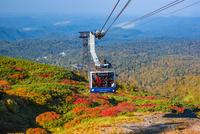 旭岳ロープウェイ 25041036210| 写真素材・ストックフォト・画像・イラスト素材|アマナイメージズ