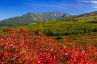旭岳から望む当麻岳