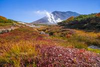 噴煙上げる旭岳