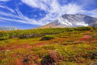 旭岳 25041036223| 写真素材・ストックフォト・画像・イラスト素材|アマナイメージズ