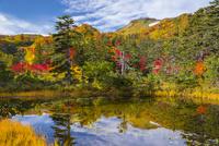 大雪高原の土俵沼 25041036242| 写真素材・ストックフォト・画像・イラスト素材|アマナイメージズ