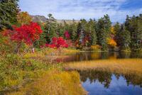 大雪高原の緑沼 25041036247| 写真素材・ストックフォト・画像・イラスト素材|アマナイメージズ