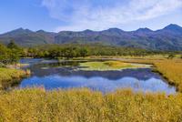 知床五湖の一湖と知床連山