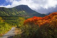 十勝岳温泉付近の十勝岳登山道 25041036409| 写真素材・ストックフォト・画像・イラスト素材|アマナイメージズ