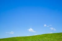 草原と空 25041036411| 写真素材・ストックフォト・画像・イラスト素材|アマナイメージズ