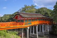 宇佐神宮の呉橋