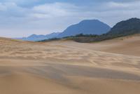 朝の鳥取砂丘 25041036503| 写真素材・ストックフォト・画像・イラスト素材|アマナイメージズ