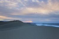 夕暮れの鳥取砂丘 25041036523| 写真素材・ストックフォト・画像・イラスト素材|アマナイメージズ