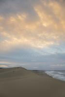夕暮れの鳥取砂丘 25041036524| 写真素材・ストックフォト・画像・イラスト素材|アマナイメージズ