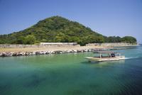 萩八景遊覧船と指月山 25053013604| 写真素材・ストックフォト・画像・イラスト素材|アマナイメージズ