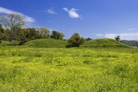 新原・奴山古墳群 25053016764| 写真素材・ストックフォト・画像・イラスト素材|アマナイメージズ