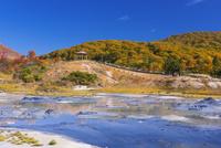紅葉の後生掛自然研究路より大湯沼を望む