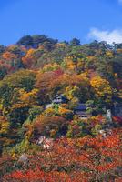 紅葉の山寺
