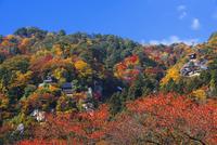 紅葉の山寺 25053017967| 写真素材・ストックフォト・画像・イラスト素材|アマナイメージズ