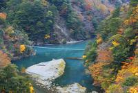 紅葉の寸又峡 25053018037| 写真素材・ストックフォト・画像・イラスト素材|アマナイメージズ