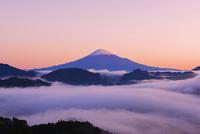 夜明けの富士山と雲海 25053018083| 写真素材・ストックフォト・画像・イラスト素材|アマナイメージズ