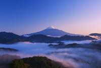 夜明けの富士山と雲海 25053018084| 写真素材・ストックフォト・画像・イラスト素材|アマナイメージズ