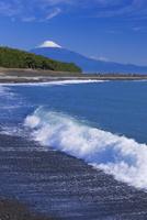 三保の松原と富士山 25053018122| 写真素材・ストックフォト・画像・イラスト素材|アマナイメージズ