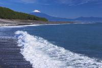 三保の松原と富士山 25053018124| 写真素材・ストックフォト・画像・イラスト素材|アマナイメージズ