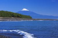 三保の松原と富士山 25053018126| 写真素材・ストックフォト・画像・イラスト素材|アマナイメージズ