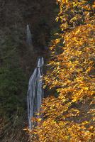 紅葉の丸神の滝